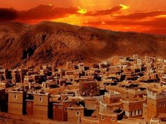 profeta Muhammad (BP), Meca, Abû Tâlib