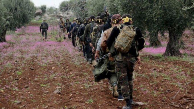 Siria, Idlib, Hama,OSDH