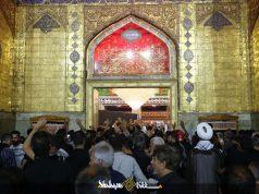 Arba'in, Najaf, Imam Ali (A.S)