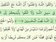 Corán, Sura Bagara, islam, Profeta (BPD)