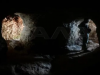 Siria, Bashar al-Asad, Alepo