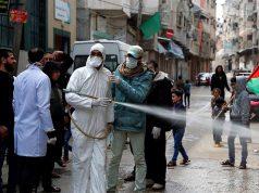 Gaza, Israel, OMS, COVID-19