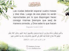 islam, Sagrado Corán, Sura Al-Baqara