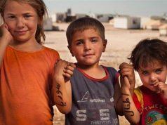 ONU, Siria, FDS