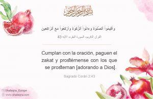 Umma Islámica, Eid al Fitr, islam, Imam Alí (as)